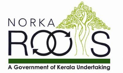 logo-norka