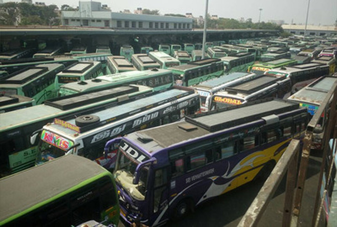 special-buses