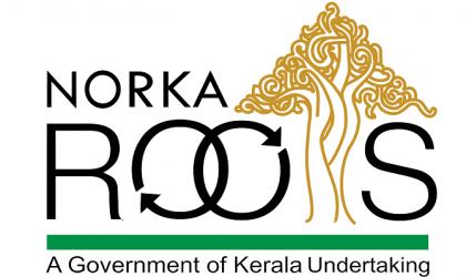 logo_norka2-1