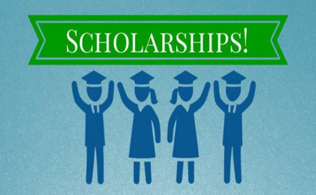 Government scholarship