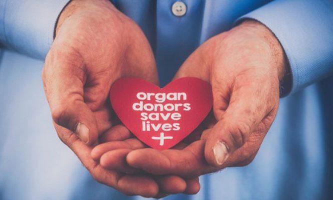 organ donations