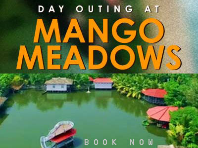 Mango-Meadows
