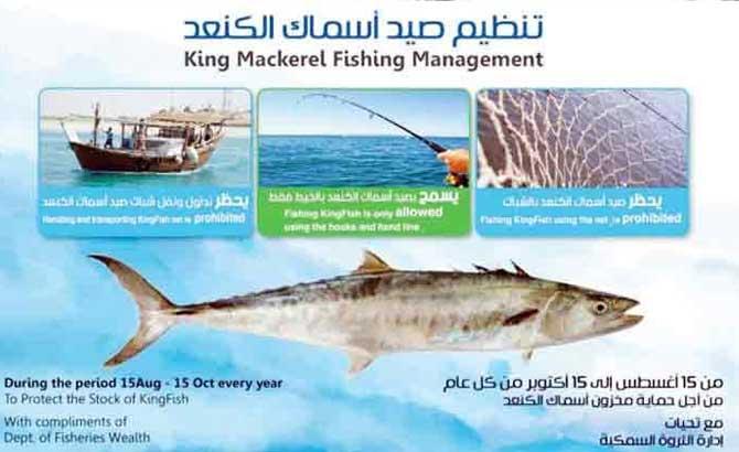 king-fish