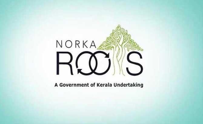 norka-news